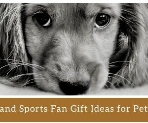 Tips and Sports Fan Gift Ideas for Pets and Pet Lovers